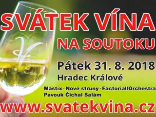 svatek-vina-2018-25